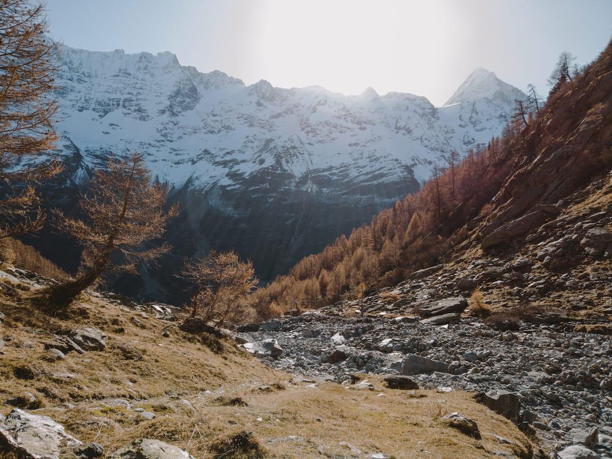 Aufgehende Sonne über schneebedecktem Bietschhorn